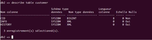 db2_describe_table
